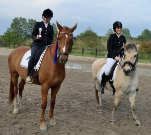 Klubmester hest dressur Michelle